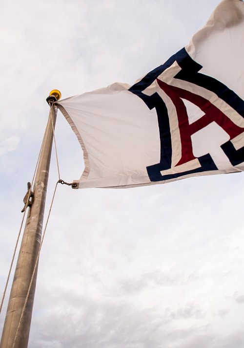 Large University of Arizona banner attached to a flagpole winding in the air